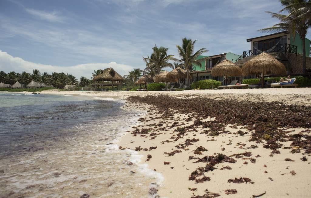 terrenos en Quintana Roo