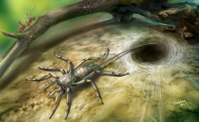 insecto prehistórico mitad araña, mitad escorpión
