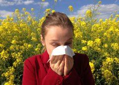 alerta del riesgo de alergia