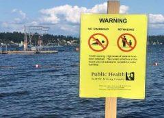 Contaminación aguas residuales en Seattle