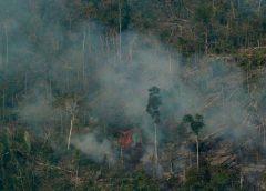 incendios en Amazonia