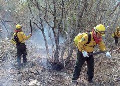 incendio Uaimil